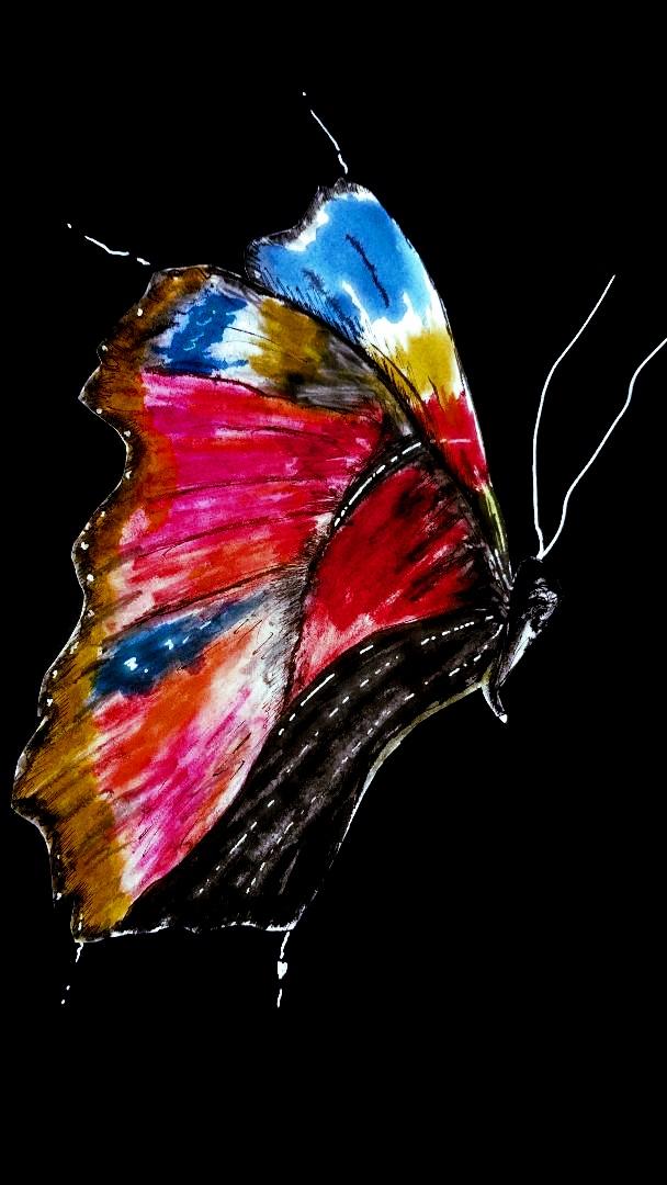 fluture_pe